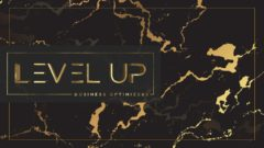 Level Up Business Optimizers